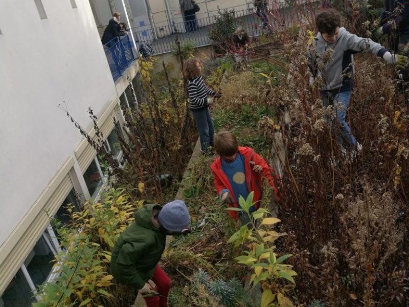 henri-matisse_jardin (3)